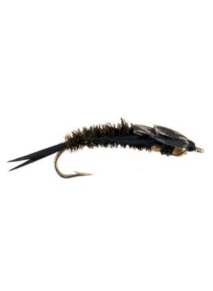2 Bead Stonefly : Peacock