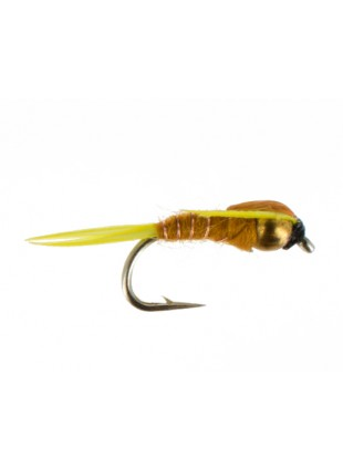 Amber Stonefly