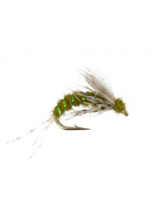 B and B Caddis