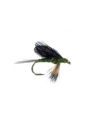Burnt Wing-Blue Wing Olive