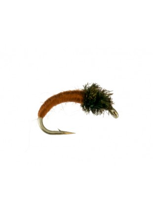 Caddis Larva : Brown