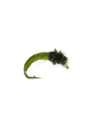 Caddis Larva : Dark Olive
