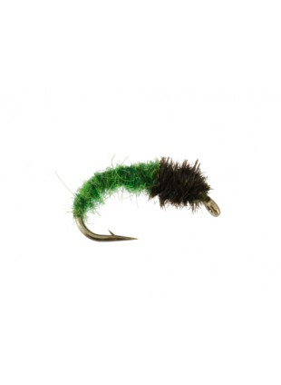 Caddis Larva : Green