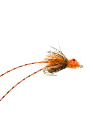 Carp Crack : Orange