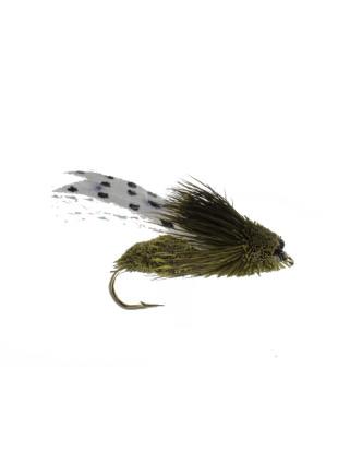 Cicada-Clark