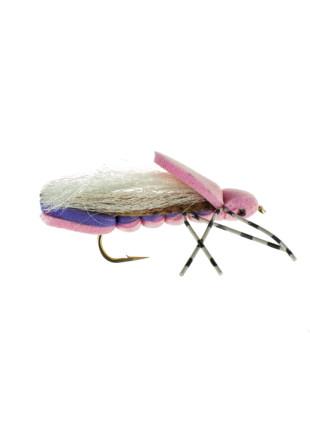 Clod Hopper : Pink