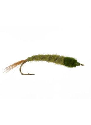 Cranefly Larva #2
