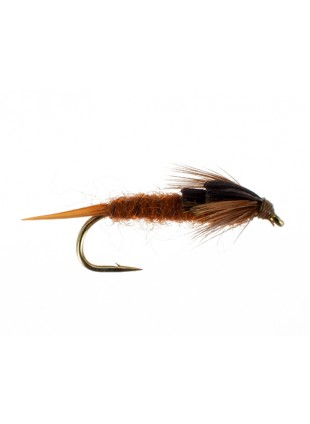 Early Brown Stonefly