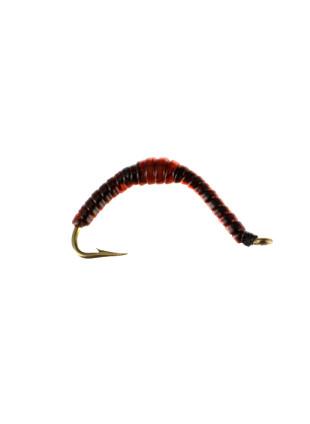 Erie Earthworm
