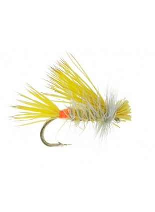 Little Yellow Stonefly