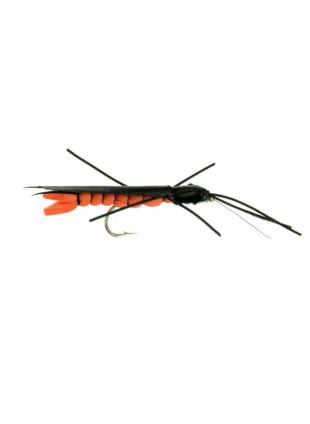 Giant Salmonfly : Foam
