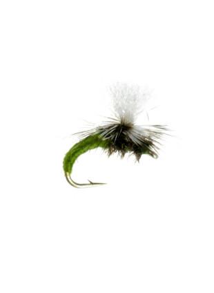 Klinkhammer : Olive