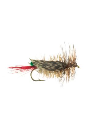 Hopper-Joe's : Green