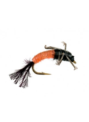Jumbo Caddis : Orange