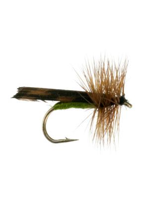King River Caddis : Olive