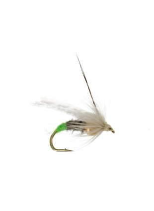 Ovulating Caddis : Light