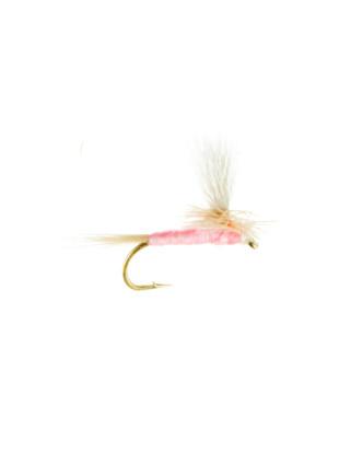 Pink Cahill-Parachute