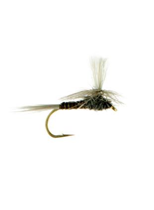 Quill Gordon-Parachute