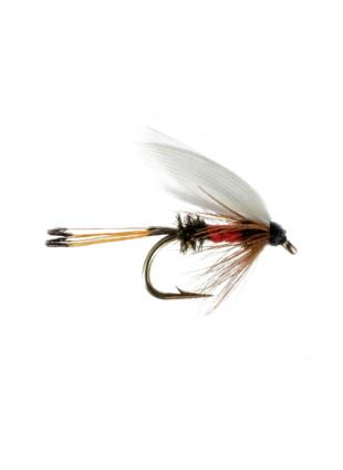 Wet Fly : Royal Coachman
