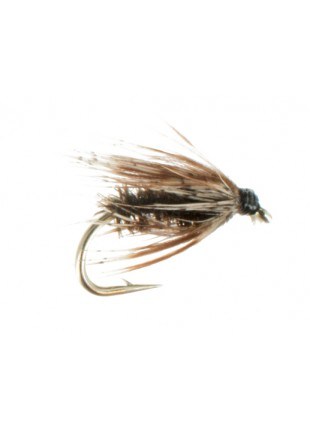 Soft Hackle : Peacock