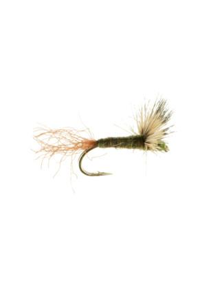 Sparkle Dun-Blue Wing Olive : Brown Shuck