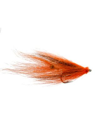 Squid : Orange