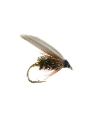 Wet Fly : Leadwing Coachman