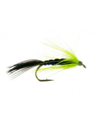 Wet Fly : Six Pack