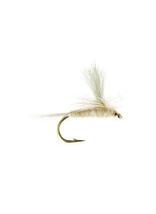 Whitefly-Parachute