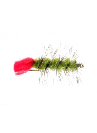 Woolly Worm : Olive