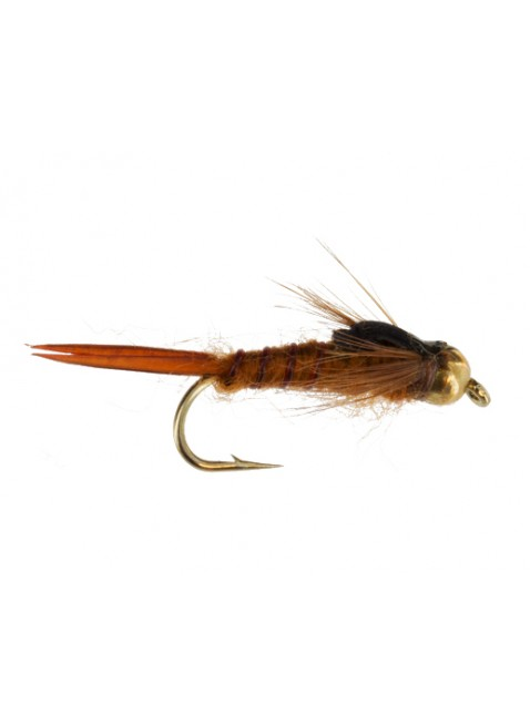 Beadhead Early Stonefly : Brown