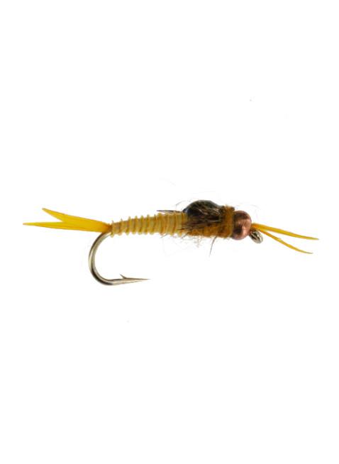 Beadhead Epoxy Micro Stonefly : Golden