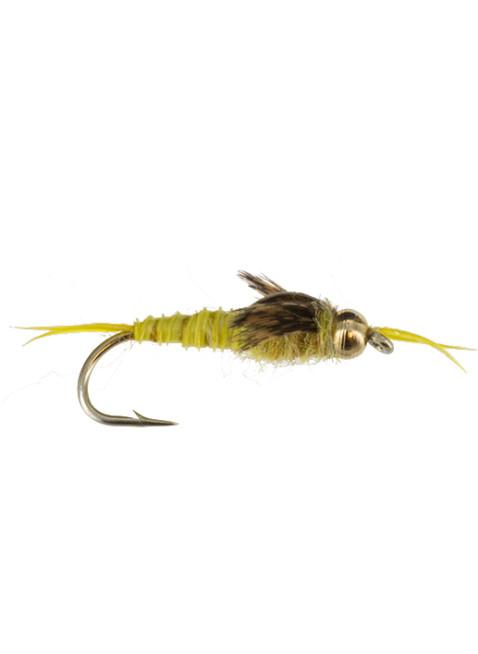 Beadhead Epoxy Stonefly : Golden
