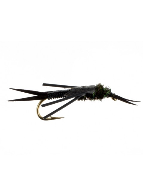 Copper Stonefly : Black #2