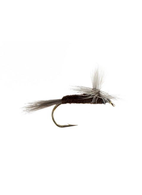 Isonychia-Slate Drake-Parachute