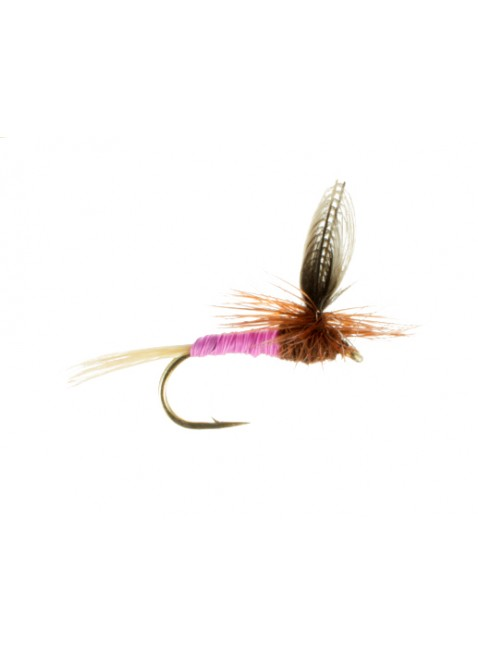 Pink Albert-Parachute
