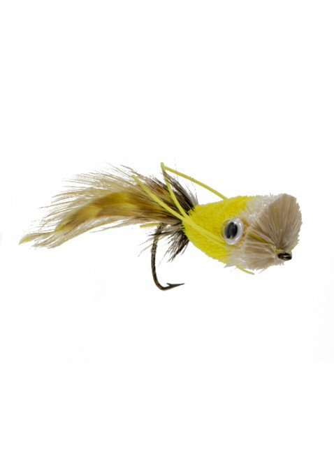 Popper : Canary