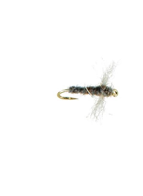 Spinner-Callibaetis