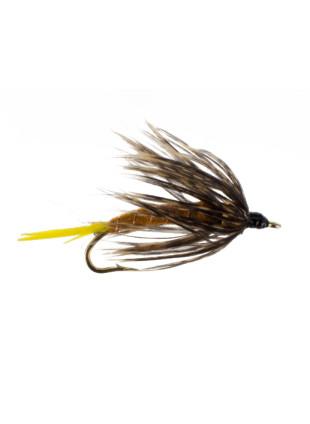 2B Golden Stonefly