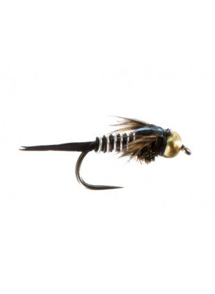 Beadhead Copper John : Zebra (Barbless)