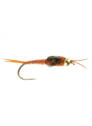 Beadhead Double Tungsten Stonefly : Brown