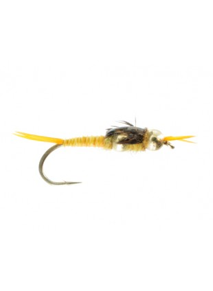 Beadhead Double Tungsten Epoxy Stonefly : Golden