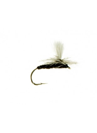 Black Drake-Parachute