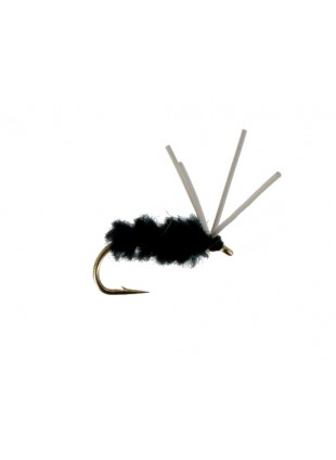 Bluegill Spider : Black