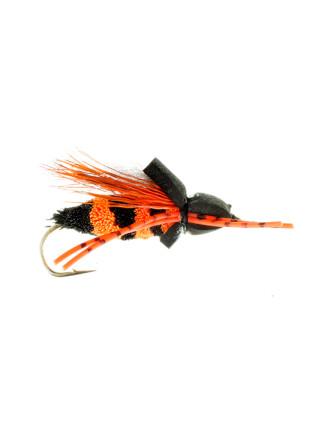 Cicada-Foam : Black + Orange