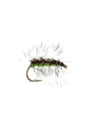 Crackleback : Chartreuse
