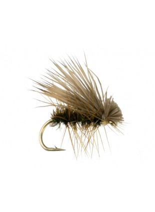 Elk Hair Caddis : Peacock