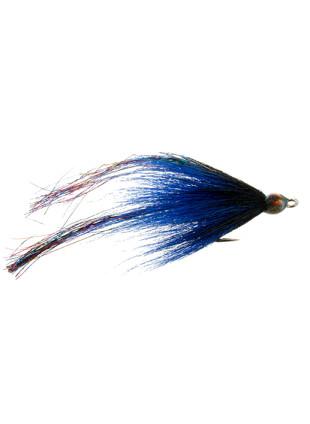 Flash Fish : Blue and Black