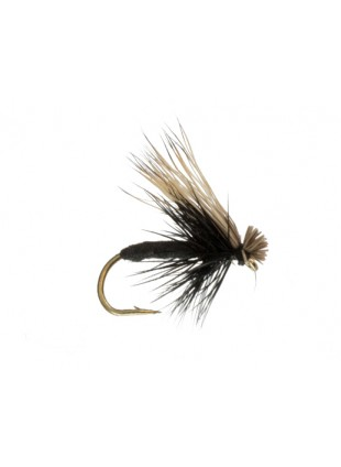 Foam Caddis : Black
