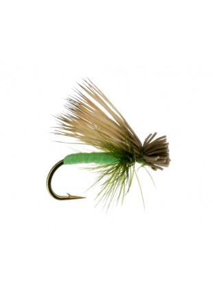 Foam Caddis : Bright Green